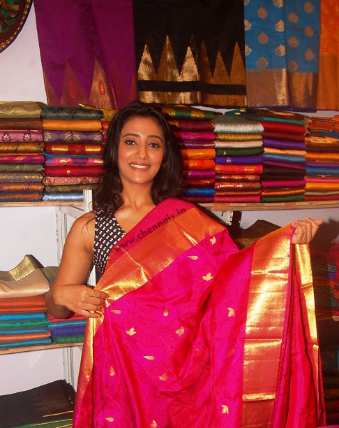 """Hastashilpi"" - organized 10 days 'Silk India -2015' at Valluvar Kottam, Nungambakkam, Chennai Expo (from 23.10.15 to 01.11.15.)  ""Various Silk Saree Weavers, Handloom Clusters and Silk Co-operative"