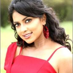Tamil ActressAmala paul Photos