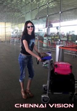 Tamil Actress Amyra Dastur Photos by Chennaivision