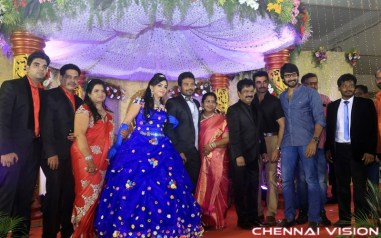 Director R Pandiarajan Son Prithvirajan Wedding Reception Photos
