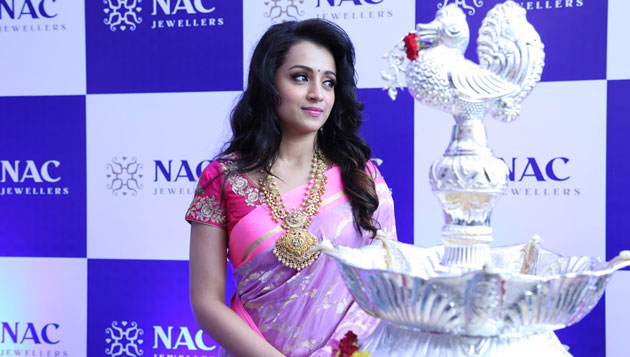 It's official Trisha in Saamy 2