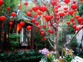 Chinese New Year, Bellagio Conservatory, Las Vegas.