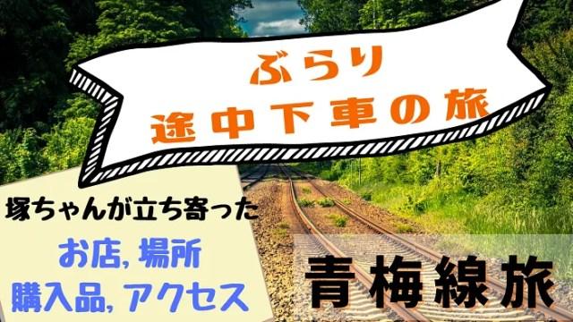 【ぶらり途中下車の旅】塚田僚一が行った青梅線旅【今日のお店紹介】