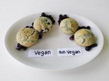 Blueberry Muffins (1)
