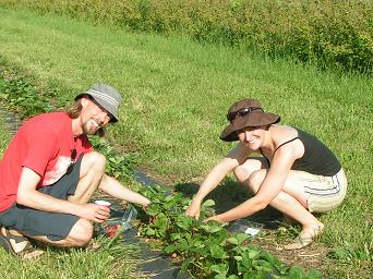 Braving the heat for those strawberries!!!!