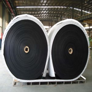M 24 Conveyor Belt