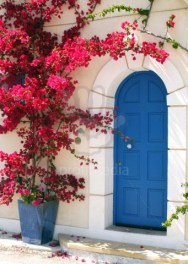 Image: 0010243964, License: Royalty free, Restrictions: ::::::::::::::, Blue door surrounded by pink bourgainvillea in a small street in Assos, Cephalonia, Greece, Property Release: No or not aplicable, Model Release: No or not aplicable, Credit line: Profimedia.com, Alamy