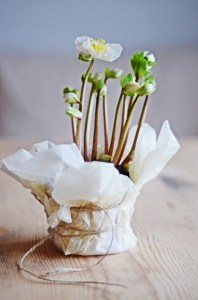tissue wrap favor2