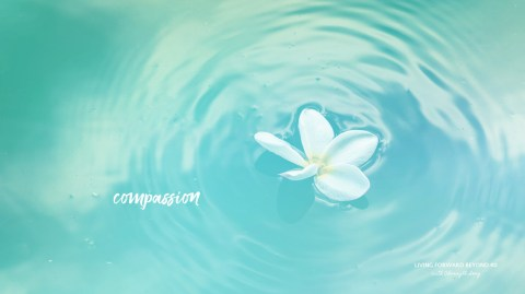 Compassion tablet wallpaper