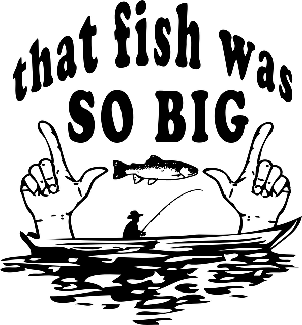 fish-546939_640