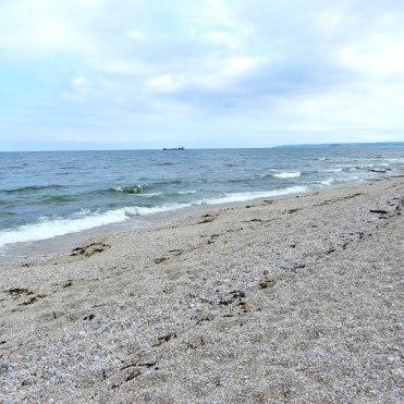 Cornwall Falmouth Gyllyngvase beach area DSCN0263