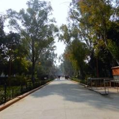 India Kisan Ghat cherrylsblog.com DSCN8978