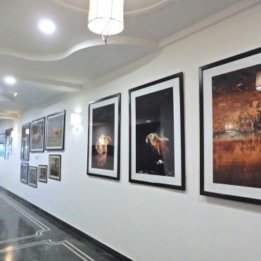 The Ranthambore Regency Hotel India cherrylsblog.com DSCN9505