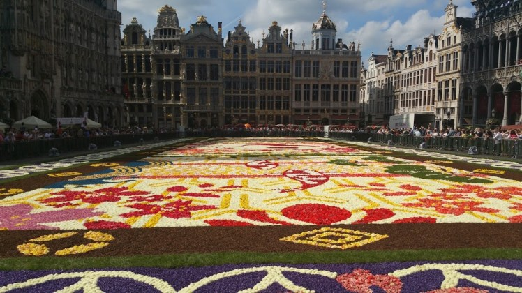 Flower carpet Brussels 2016