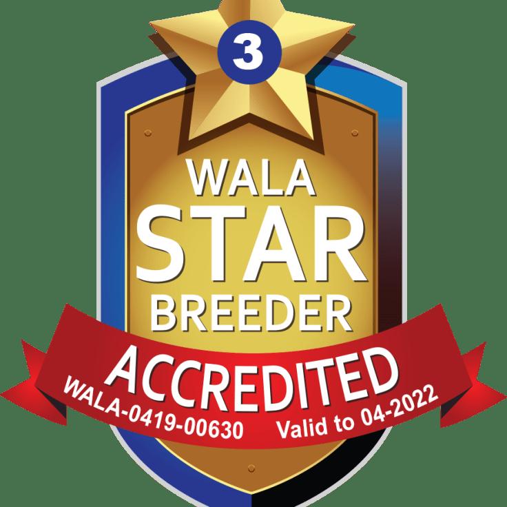 Cherry Valley Accredited Logo 2022