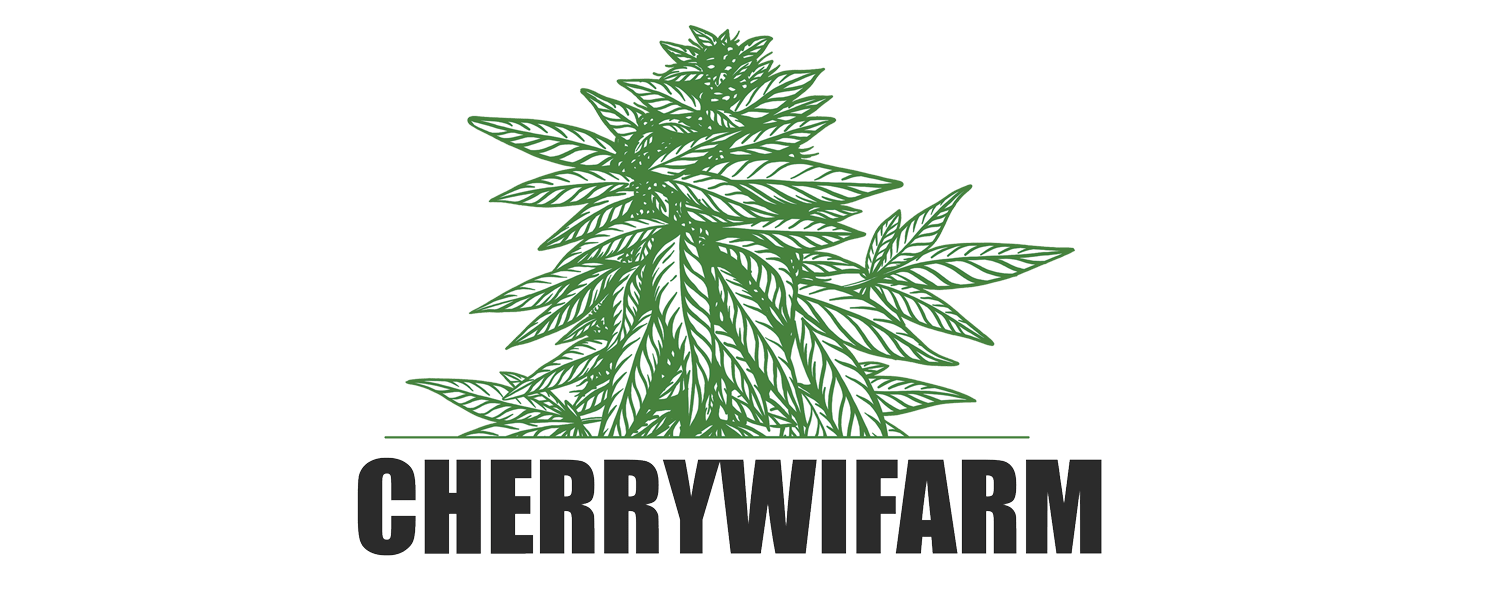CHERRYWIFARM- The Best CBD flowers Europe – Wholesale Hemp Flowers Europe