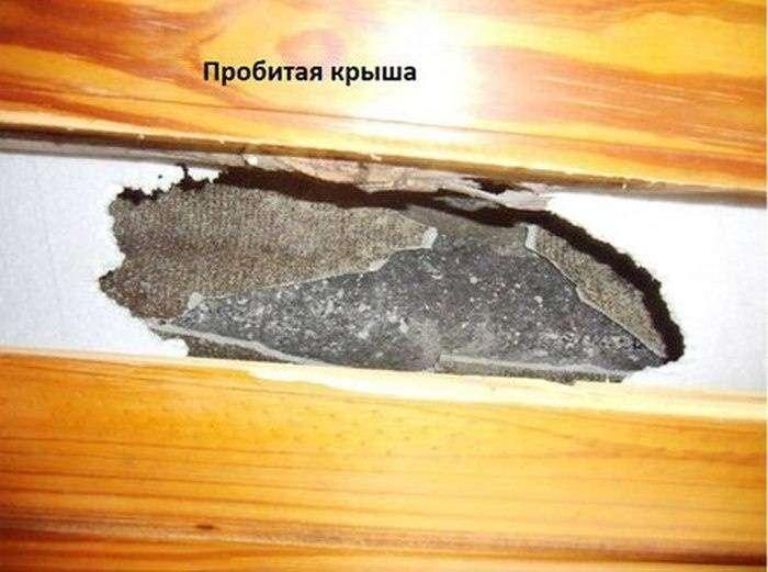 Какова вероятность, что на ваш дом упадет метеорит (7 фото)