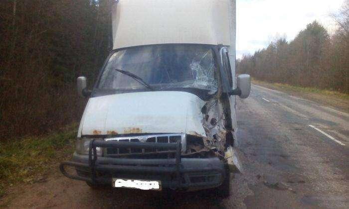 Последствия столкновения с запаской грузовика ( 2 фото)