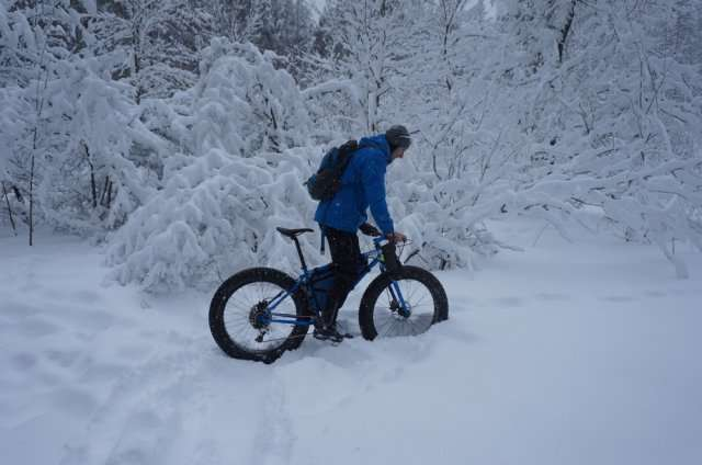 Приколы про настоящую зиму (50 фото)