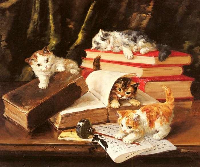 История кошек-5 фото + 1 видео-