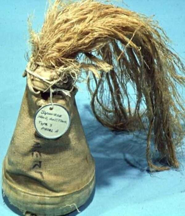 -Банный лист- и -Лисий хвост-: 5 необычных гранат мировых войн