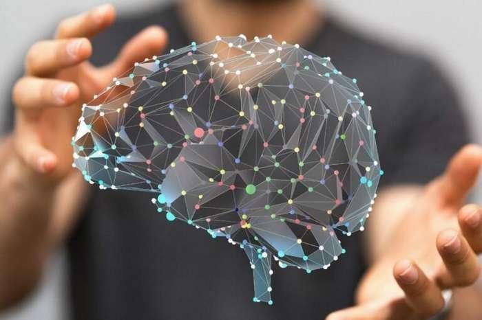 5 мифов о мозге-2 фото-