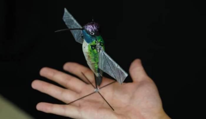 Как выглядит самый реалистичный робот-колибри?