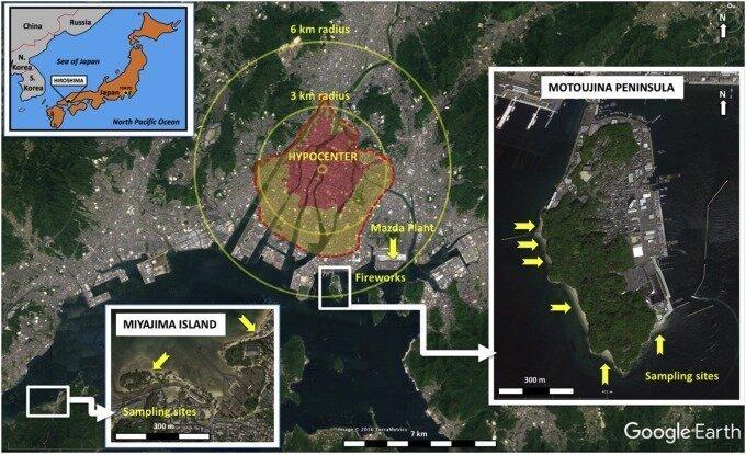 Хиросимиты — удивительные артефакты, созданные ядерным взрывом-5 фото-