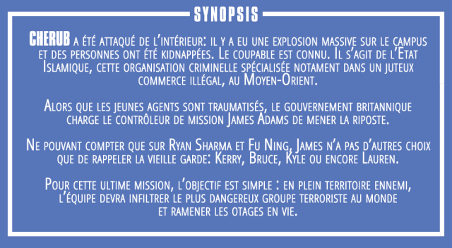 synopsis 17