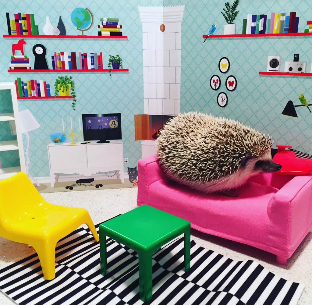 Toto hedgehog with IKEA dollhouse