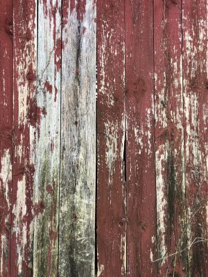 Red Barn close up