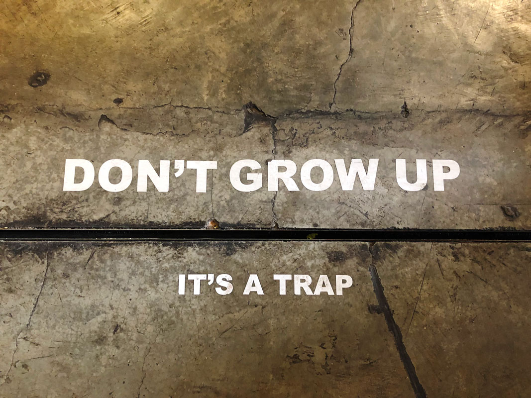 "Sign ""Dont Grow Up - It's a Trap"