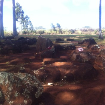Kukaniloko Birth Stones
