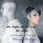 A Sci-Fi short story romance
