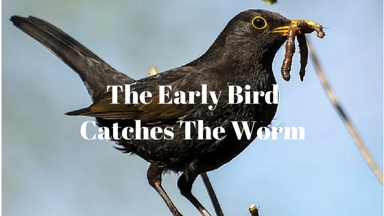 The early bird catches the worm. atozchallenge