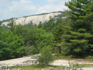 side of Mt Dickey from welch plateau
