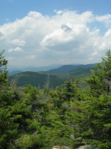 view of Twin Mountains north on Mt Dickey