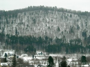 Deciduous thin trees poke up from snow on hills in Vermont Februrary 2011
