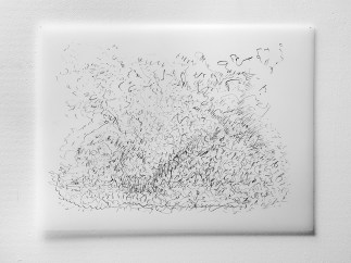 "Untitled #17, graphite on vellum, 19 x 24"", 2009"