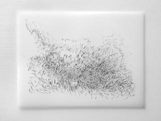 "Untitled #18, graphite on vellum, 19 x 24"", 2009"