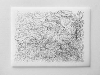 "Untitled #26, graphite on vellum, 19 x 24"", 2009"