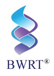 BrainWorking Recursive Therapy Logo