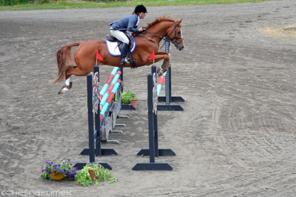 Show Jumping at Aspen Farms Horse Trials June 2014   Chesna Klimek