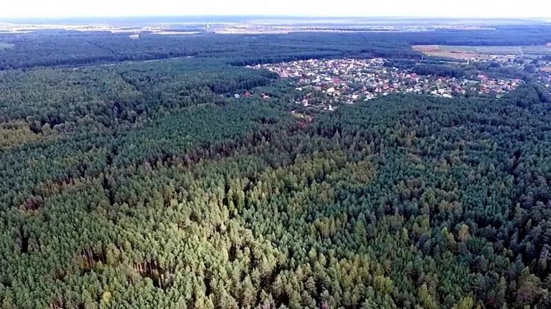 Филипповский лес вновь защищают в судах. На этот раз от застройки