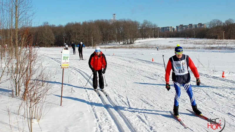 Лыжероллерную трассу в парке «Дружба» отодвинули от участка Шешениных