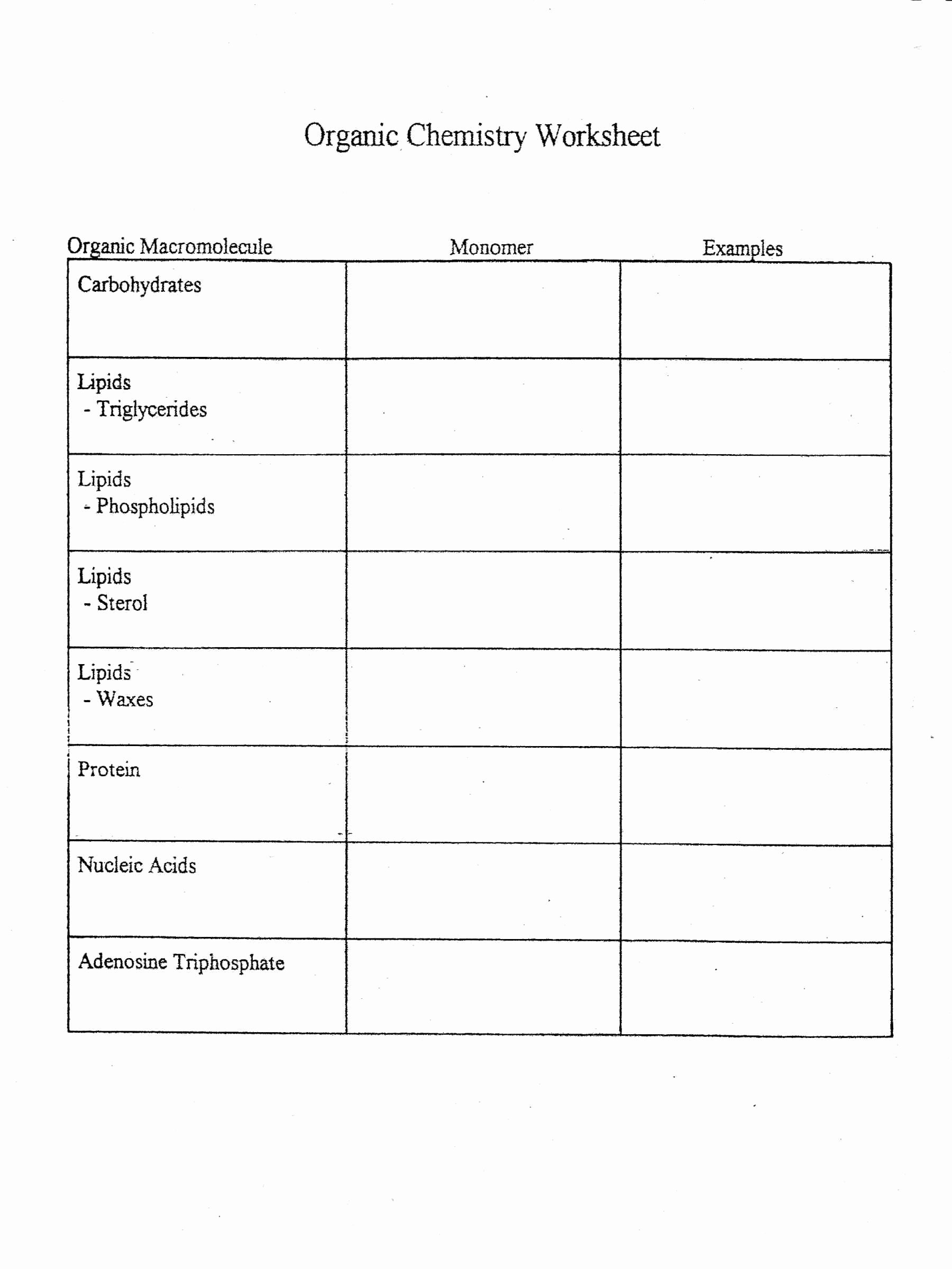 50 Biological Molecules Worksheet Answers
