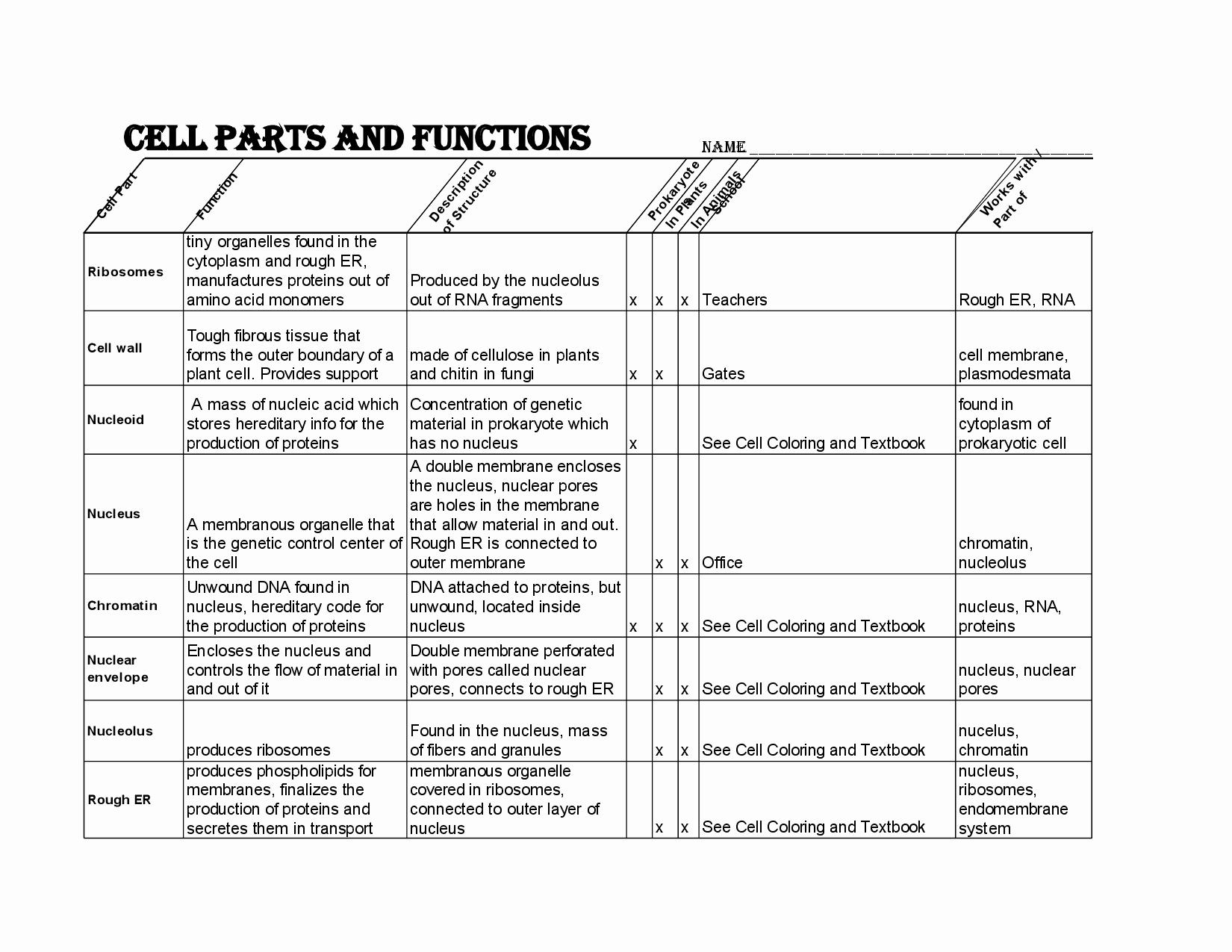 50 Balancing Chemical Equation Worksheet