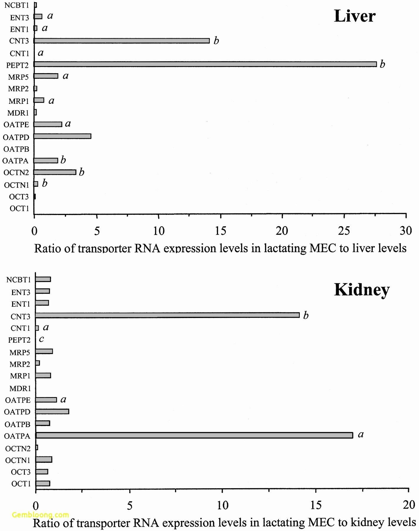 50 Characteristics Of Bacteria Worksheet