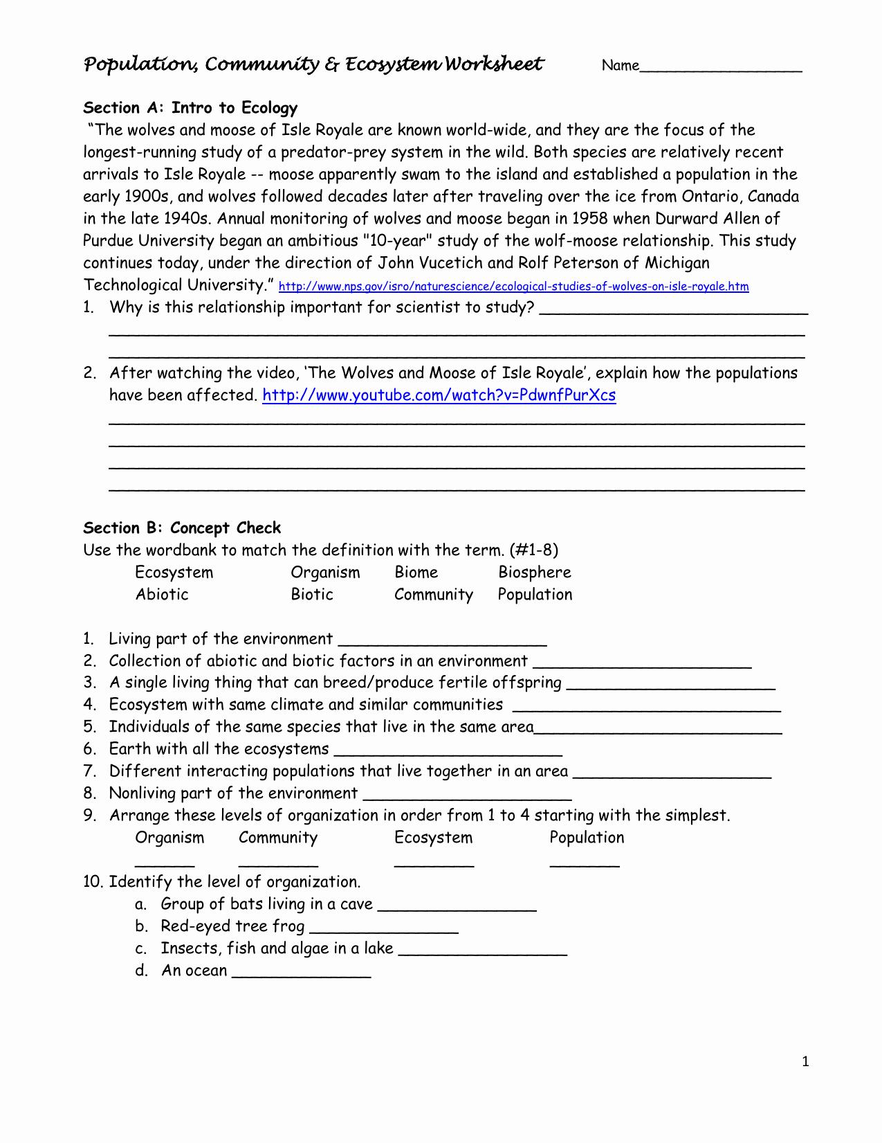 50 Energy Flow Worksheet Answers