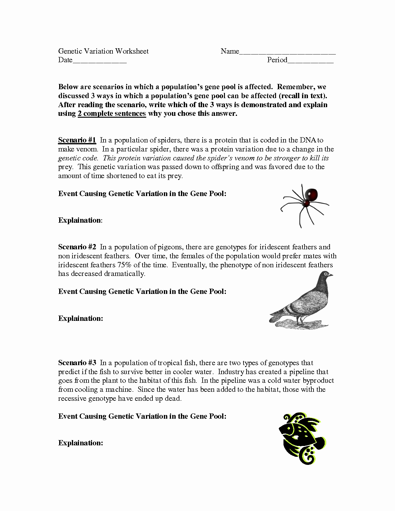 50 Genetic Mutations Worksheet Answer Key